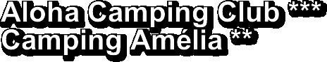 - camping-amelie.com